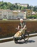 Mann, der mit Hund, Florenz radfährt Stockbild