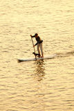 Mann, der mit Hund paddleboarding ist Stockbild