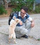 Mann, der mit kleinem Hund spielt Stockbild