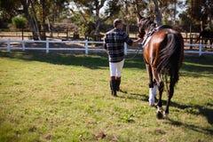 Mann, der mit Pferd in der Ranch geht stockfotografie