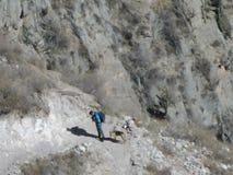 Mann, der mit seinem Hund klettert Lizenzfreie Stockbilder