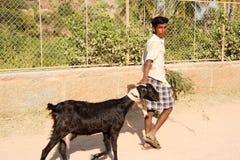 Mann, der mit seiner Ziege bei Hampi geht Lizenzfreie Stockbilder