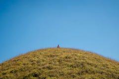 Mann, der n-Bergwiese sitzt Lizenzfreie Stockfotografie