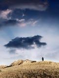 Mann in der Natur stockfotos