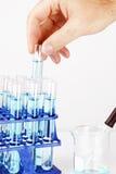 Mann, der Probe im Reagenzglas aufhebt stockfotos