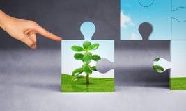 Mann, der Puzzlespielstück des Geldbaums von Hand eindrückt Lizenzfreie Stockfotos