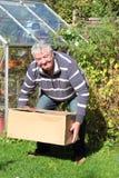 Mann, der richtig schweren Kasten anhebt. Lizenzfreies Stockfoto