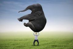 Mann, der schweren Elefanten anhebt Lizenzfreies Stockbild