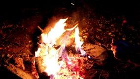 Mann, der seine Hände durch das Feuer wärmt Großes Feuer, Nacht Ein enormes Feuer auf einem dunklen Hintergrund Lagerfeuernahaufn stock video