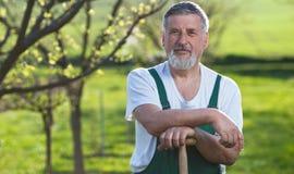 Mann, der in seinem Garten im Garten arbeitet lizenzfreie stockfotografie