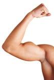 Mann, der seinen zweiköpfigen Muskel zeigt Stockfotos