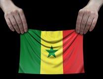 Mann, der Senegal-Flagge hält Lizenzfreies Stockfoto