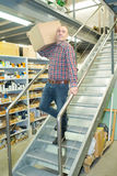 Mann, der an Treppe im Lager arbeitet Lizenzfreie Stockbilder