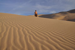 Mann in der Wüste Stockbilder