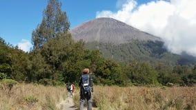 Mann, der zum Semeru-Berg schaut Stockbild