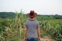 Mann, der zurück bei Cane Farm steht Stockfotos