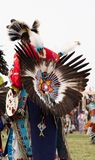 Mann des amerikanischen Ureinwohners mit Pelz-Kopfschmuck und Eagle Feather Bustle lizenzfreie stockbilder