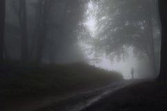 Mann in einem Wald mit Nebel Lizenzfreies Stockbild