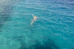 Mann ertrinkt im Meer Ertrinken des Mannes im Meer bitten um Hilfe mit den angehobenen Armen stockbild
