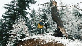 Mann geht über den kalten Winterwald, der mit Schnee bedeckt wird stock footage