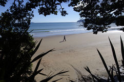 Mann geht auf einen Strand Lizenzfreie Stockfotos