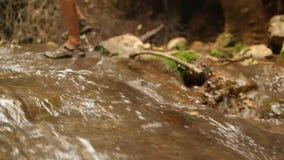 Mann geht in The Creek in den Sandalen stock video