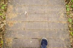Mann geht entlang einen ökologischen Weg, der von den Brettern, im Wald hergestellt wird stockfotografie