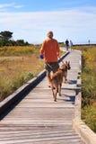 Mann geht Hundeerholungs-North Carolina im Freien NC Stockbild