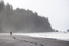 Mann geht Strand im Nebel Stockbild