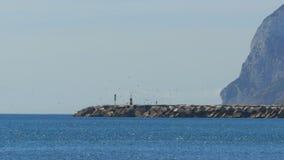 Mann geht zum Leuchtturm, um ihn fliegt eine Menge von Seemöwen auf dem Strand gibraltar spanien stock video