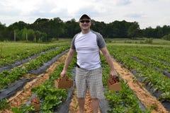 Mann gestanden auf den Erdbeergebieten Lizenzfreies Stockfoto