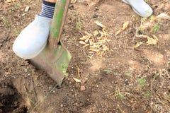 Mann gräbt Gemüsegarten, graben den Boden mit Schaufel in den Gummistiefeln lizenzfreie stockfotos