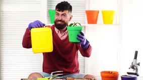 Mann hält einen Kanister mit Düngemittel und einem Topf mit der Anlage in seinen Händen Düngemittel für Pflanzenwachstum Betriebs stock footage
