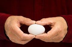 Mann hält unbelegtes weißes Ei an. Stockfotos