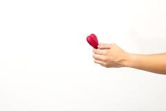 Mann-Hände mit Herzen Stockfotos