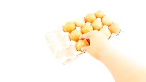Mann, halten Hühnereien über Eierablage Stockfotos
