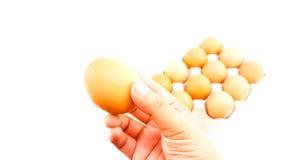 Mann, halten Hühnereien über Eierablage Lizenzfreie Stockfotos