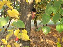 Mann hinter dem Baum Stockfotografie