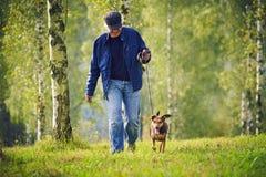 Mann-Hundebäume Stockfoto
