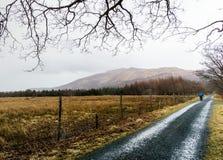 Mann im blauen Mantel gehend hinunter Kies-Weg in der Landschaft stockfotografie