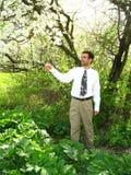Mann-im Früjahr Garten Stockbilder