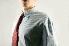 Mann im Hemd und in der Gleichheit Stockbilder