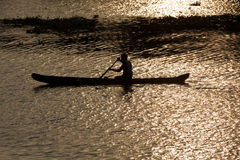 Mann im Kanu. Kerala-Stauwasser, Stockbild