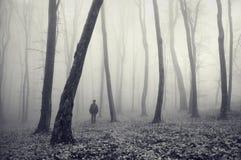 Mann im merkwürdigen geheimnisvollen Wald mit Nebel Lizenzfreie Stockfotos