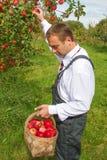 Mann im Obstgarten Lizenzfreie Stockfotos