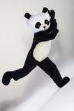 Mann im Pandakostüm Lizenzfreie Stockfotos