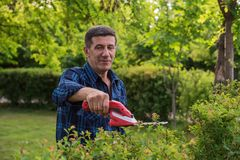 Mann im Ruhestand trimmt die grüne Hecke lizenzfreies stockbild