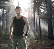 Mann im Wald Stockbilder