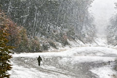 Mann im Wald, gehend in den Blizzard Lizenzfreie Stockfotografie