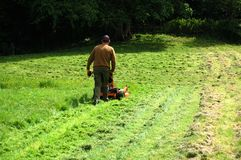 Mann-mähendes Gras stockfotografie